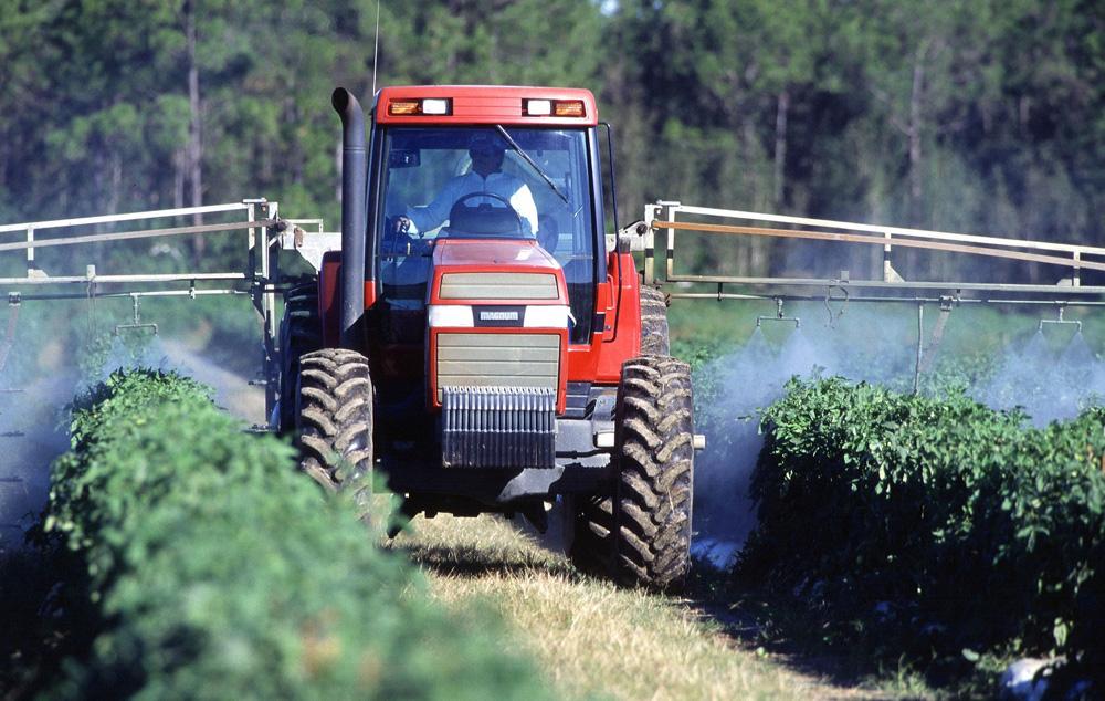 Conozca qué son los insecticidas