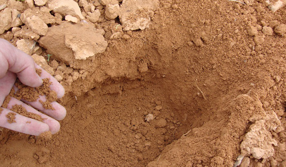Propiedades de los suelos arenosos grupo sacsa for Suelos y tipos de suelos