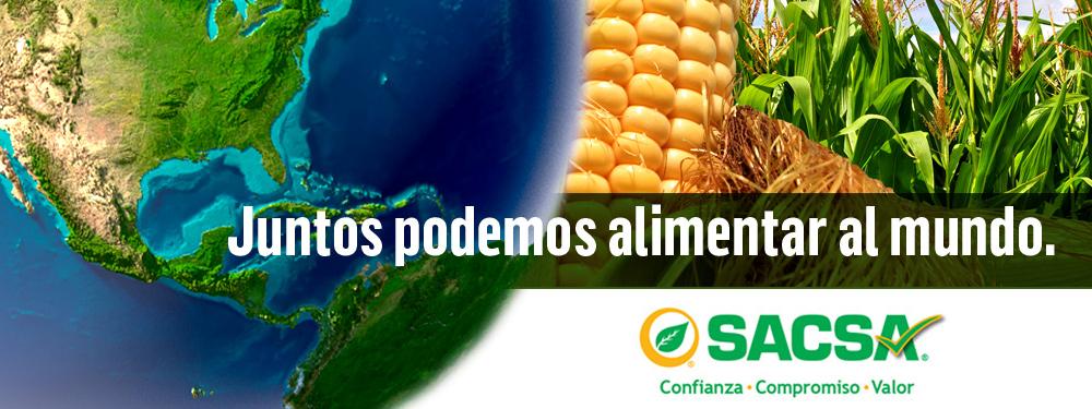 Slide_Grupo_SACSA_Alimentar_Mundo_1000x375px