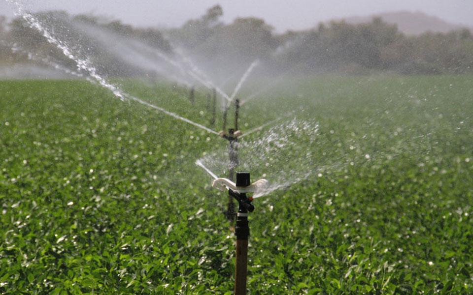 Irrigación superficial y con rociadores