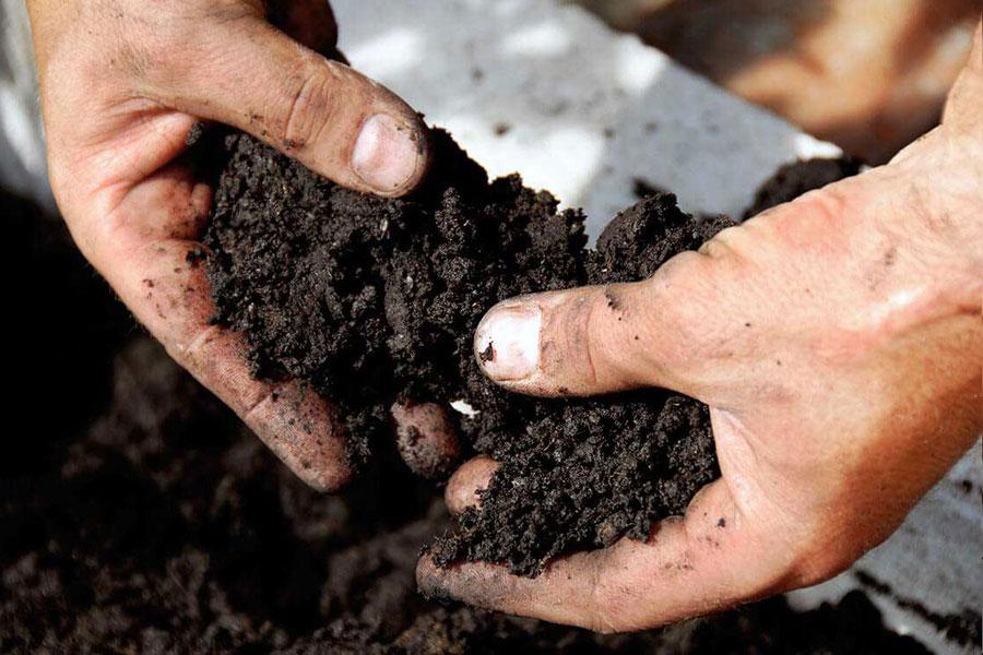 ¿Qué es la saturación de bases en los suelos?