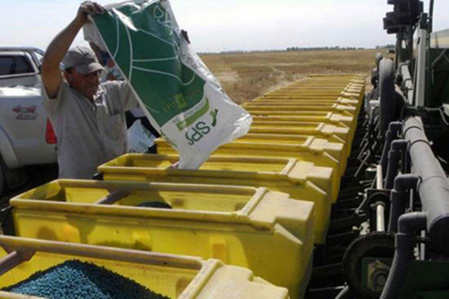 ¿ Cómo almacenar las semillas tratadas?