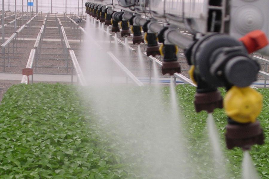 Sistemas de riego para invernaderos grupo sacsa for Sistema de riego