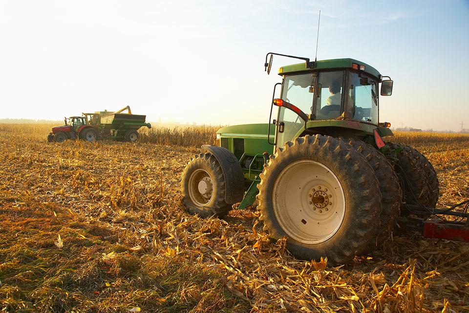 Tipos de cultivo, ciclos y estacionalidad