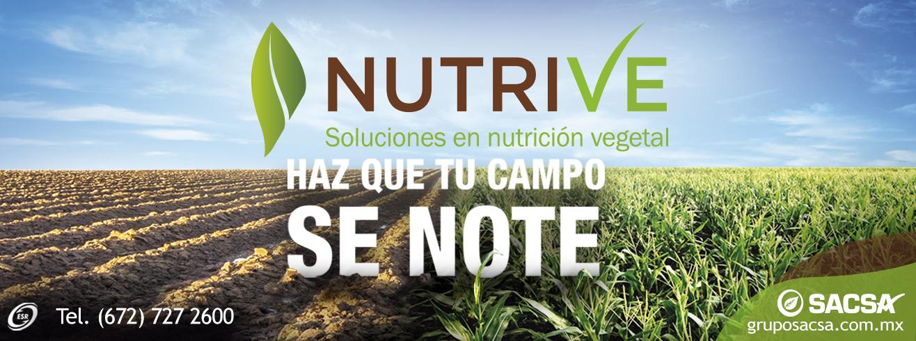 SLIDER-2017-NUTRIVE