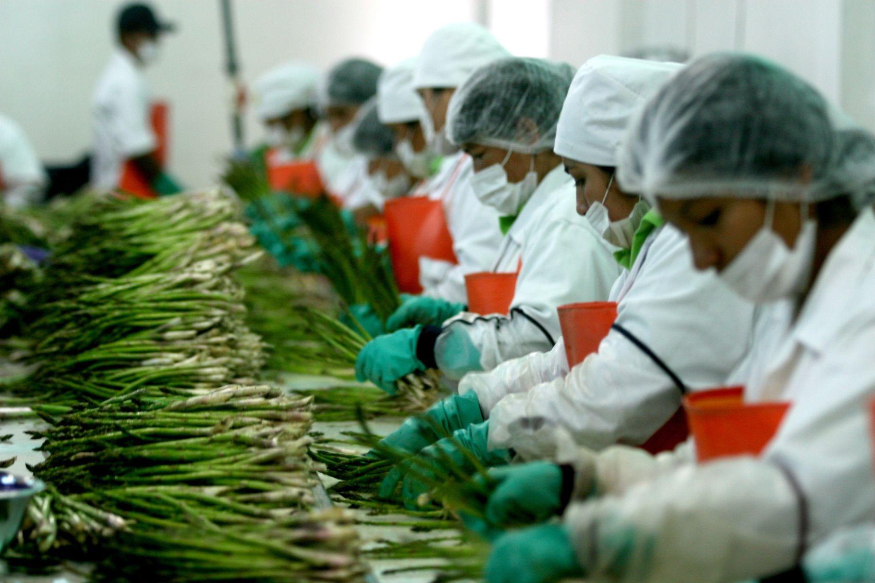 Los productos agricolas que más produce México