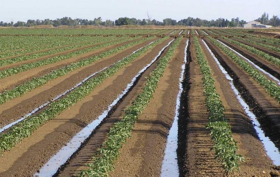 Importancia de la estructura del suelo grupo sacsa for Importancia de los suelos
