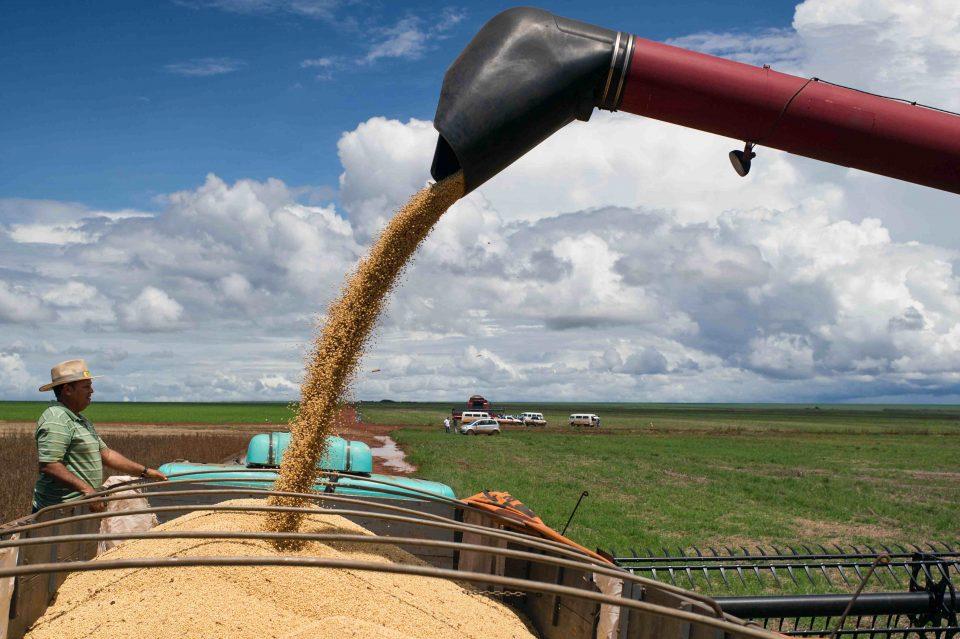 Con el TLCAN México importaría granos