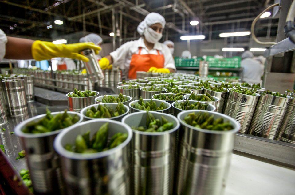 Agroindustria, motor de desarrollo