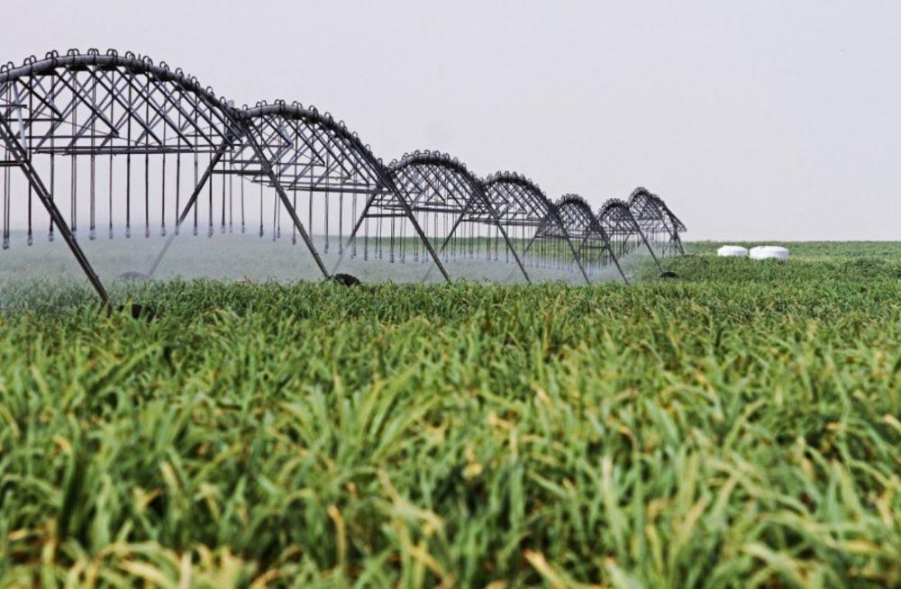 Mejorar el suelo y agua, una acción sustentable