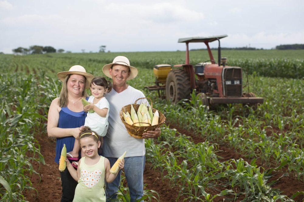 Beneficios de la agricultura en las familias mexicanas