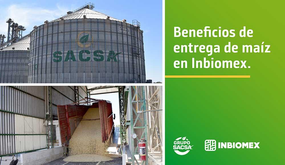 Beneficios de entrega de maíz en Inbiomex