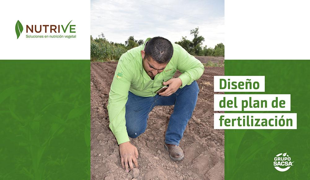 Diseño del plan de fertilización